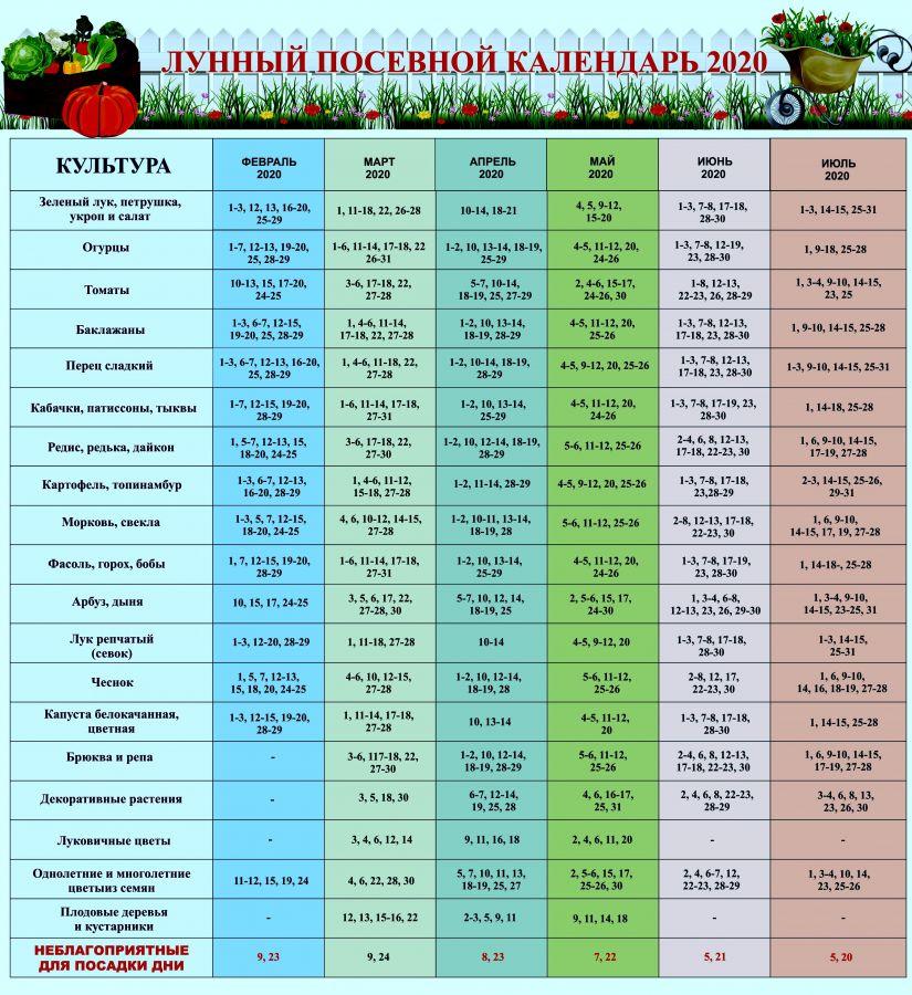 В Татарстане