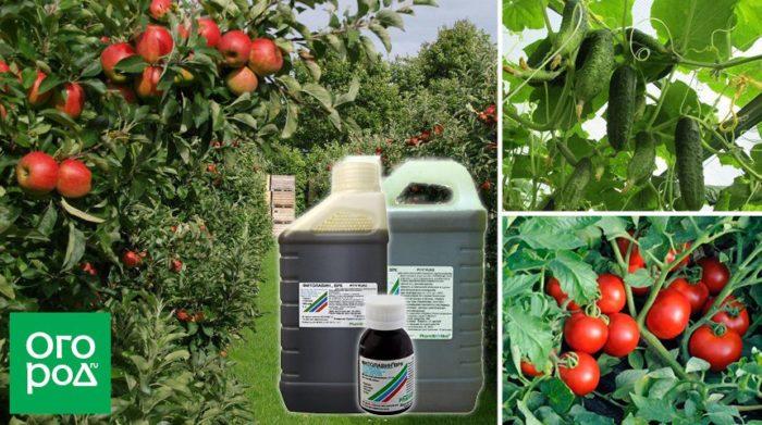 Канистра удобрения на фоне растений